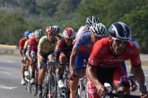 road-bikes-1562929_1280