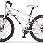 ずいぶん前ですが、2WD自転車のトレッタというものがありまして。